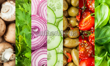fresh vegetables in a colorful collage