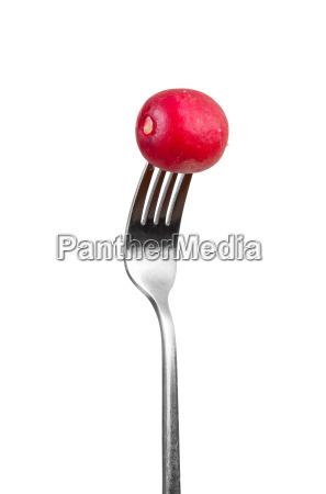 essen nahrungsmittel lebensmittel nahrung freisteller metall