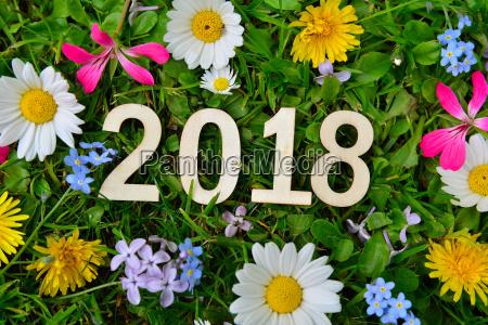 2018 years new year new year