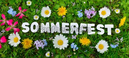 text summerfest on flower meadow