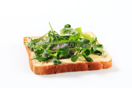 slice of bread with fresh salad