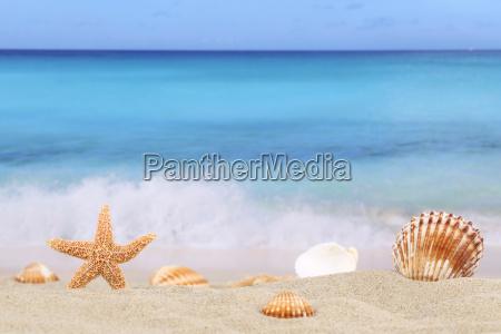 beach scene background in summer holiday