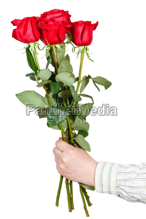 hand giving bouquet of five red