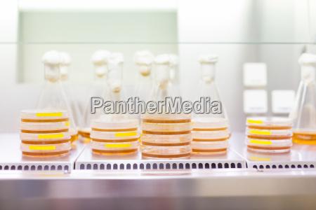 lukke objekter medicinske medicinsk eksperiment videnskab