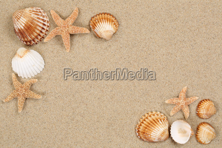 beach scene on vacation summer with