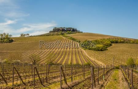 tuscany chianti countryside