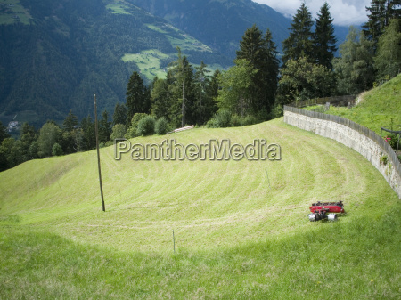 lawn mowing on the meadow