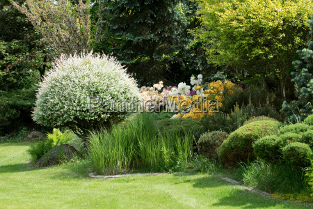 beautiful spring garden design with rhododendron