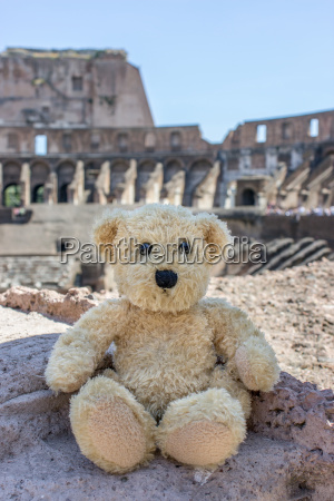 bear in colosseum in rome