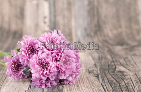 flowers with wood background