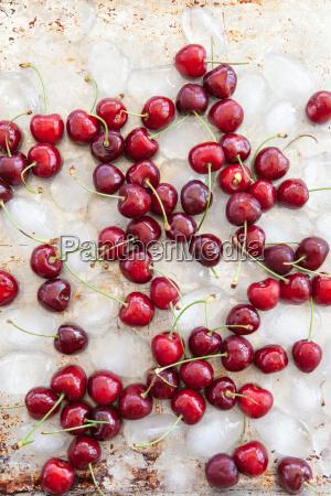 fresh cherries on ice