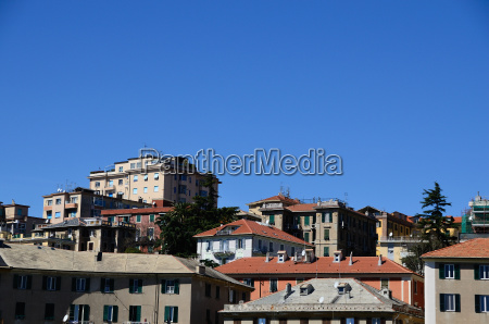 houses and trees in savona