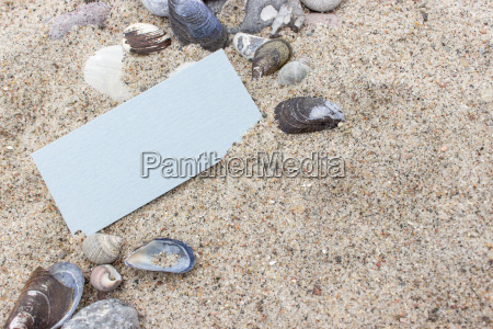 card stones and shells in beach