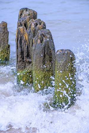old groynes in the surf
