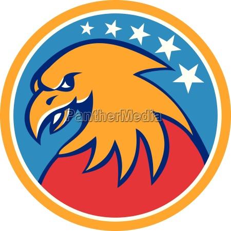 american bald eagle head stars circle