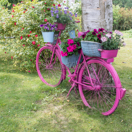 a pink bicycle with flowers stands