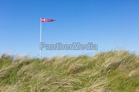 flag of denmark in summer in