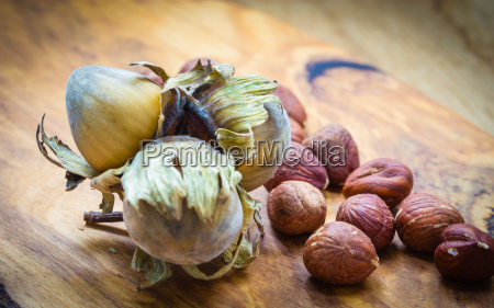 hazelnuts cluster filbert nuts in the