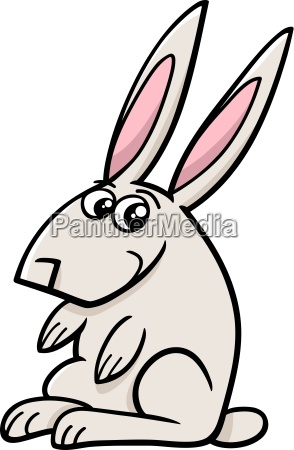 rabbit farm animal cartoon