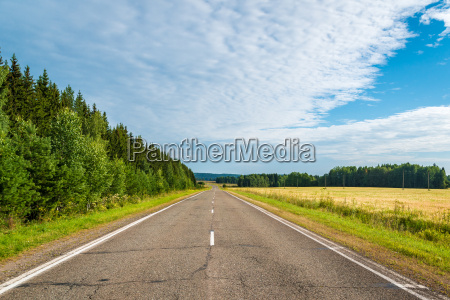highway in northen countryside with forest