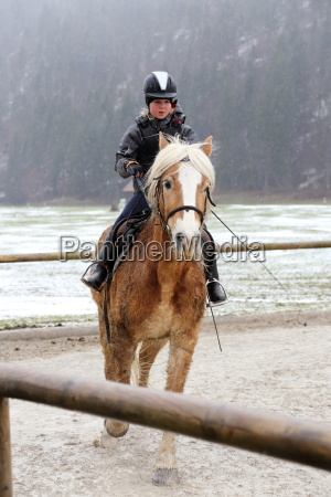 equestrian training