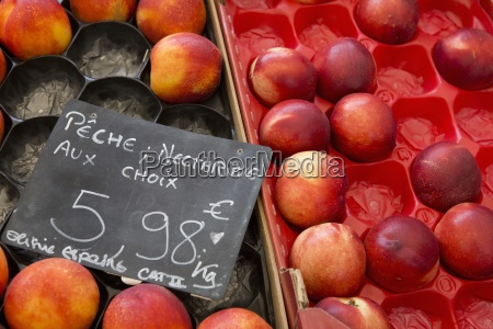 boxes of nectarines on a fruit