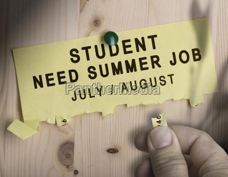 summer job seasonal jobs search