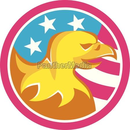 american bald eagle usa flag circle