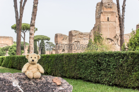 teddy before the baths of caracalla