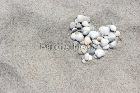 heart made of shells and pebbles