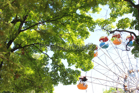 ferris wheel in the park with