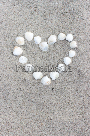 heart, made, of, shells, on, the - 14760955