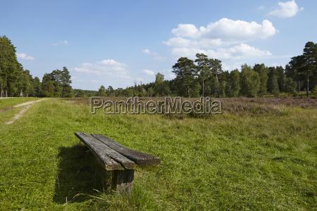 luneburg heath landscape