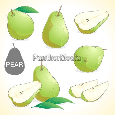 set of pear fruit in various