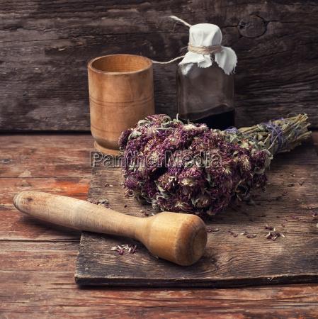 harvesting, of, medicinal, herbs - 14780977