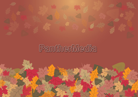 autumn leaves on the gradient background