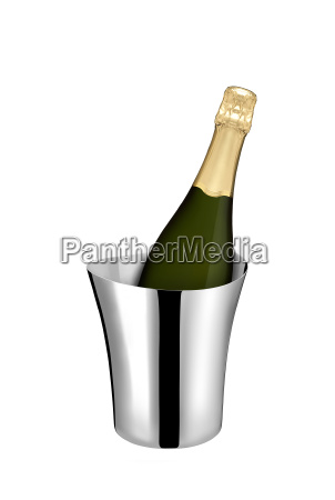 champagne bottle in a cooler isolated