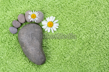 footprint made of stones with chamomile