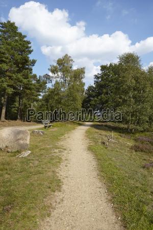 luneburg heath hike path and