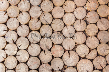 background made of firewood logs