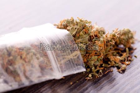 cannabis marijuana flowers in small bags