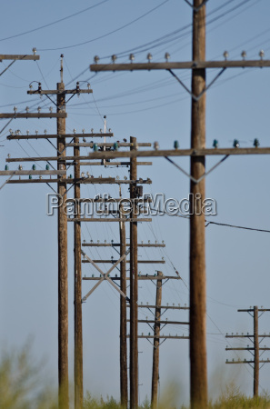 utility poles standing in the desert