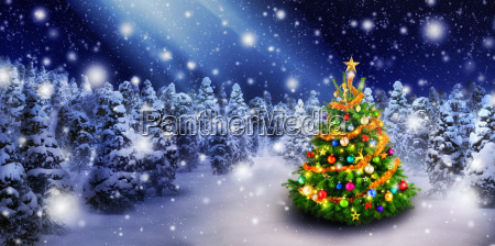 christmas tree in beautiful snow