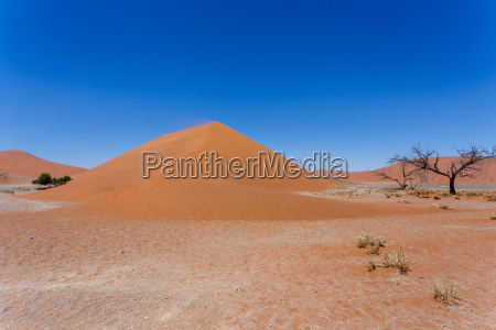 dune 45 in sossusvlei namibia with