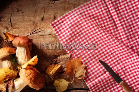 country fare of fresh autumn mushrooms