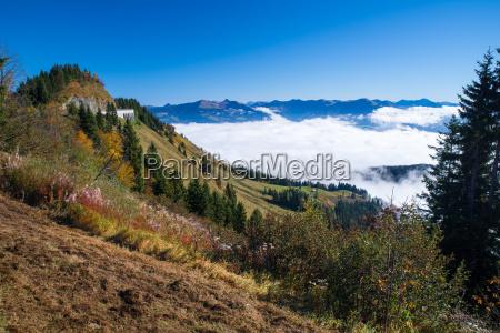 ross field panorama road in berchtesgaden
