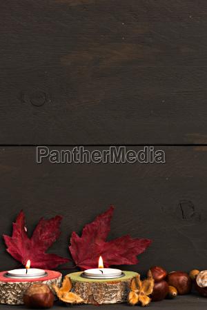 autumn mood leaves against wood