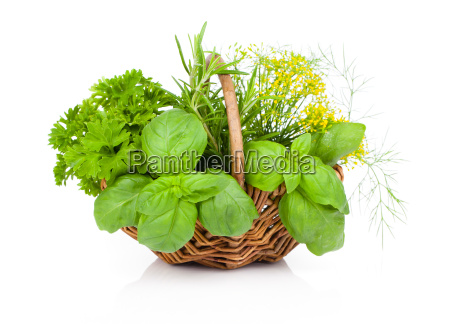 basil parsley and dill in basket