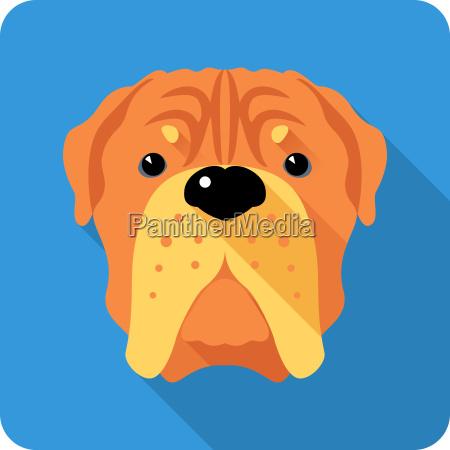 dog french mastiff icon flat