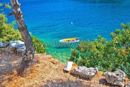 idyllic pine tree beach in croatia